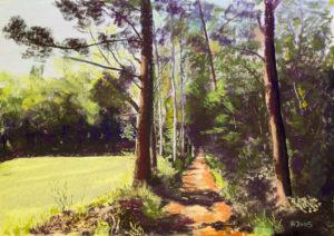 Gorssel bospaadje 60 x 80 cm (2016) verkocht