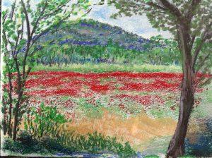 Klaprozen in de Provence 40 x 50cm (2014) €300