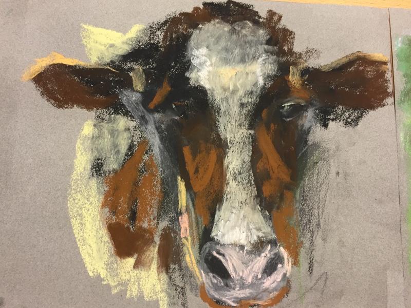 Koe in weiland bij Montfoort 50 x 60 cm (2016) € 350
